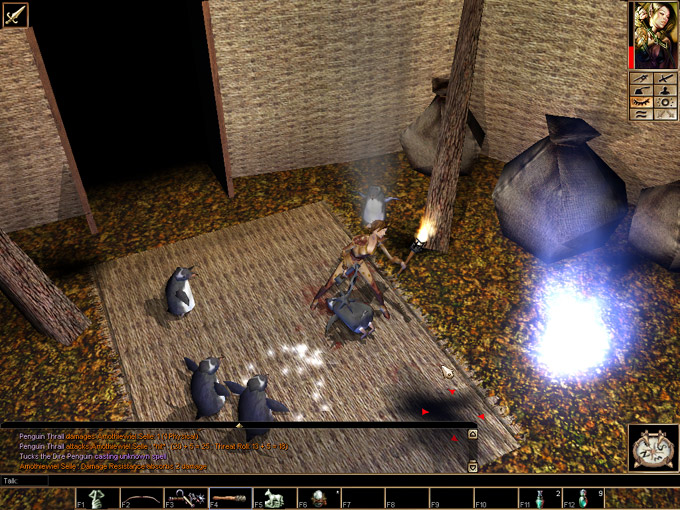 neverwinter nights текстуры: